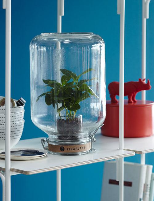 Peter Fehrentz interiordesign photography Innenarchitektur Fotografie Design Möbeldesign Furnituredesign Schöner Wohnen minimal pikaplant blue wall